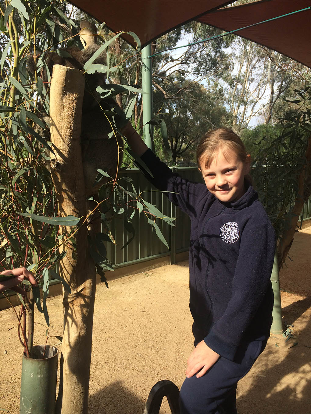 School Camp at Melbourne Zoo